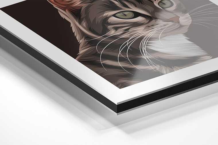 Portret op Aluminium voor huisdieren